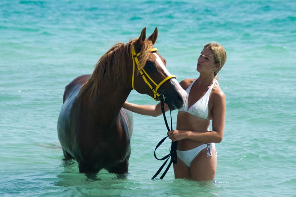 Zwemmen met paarden - Djerba