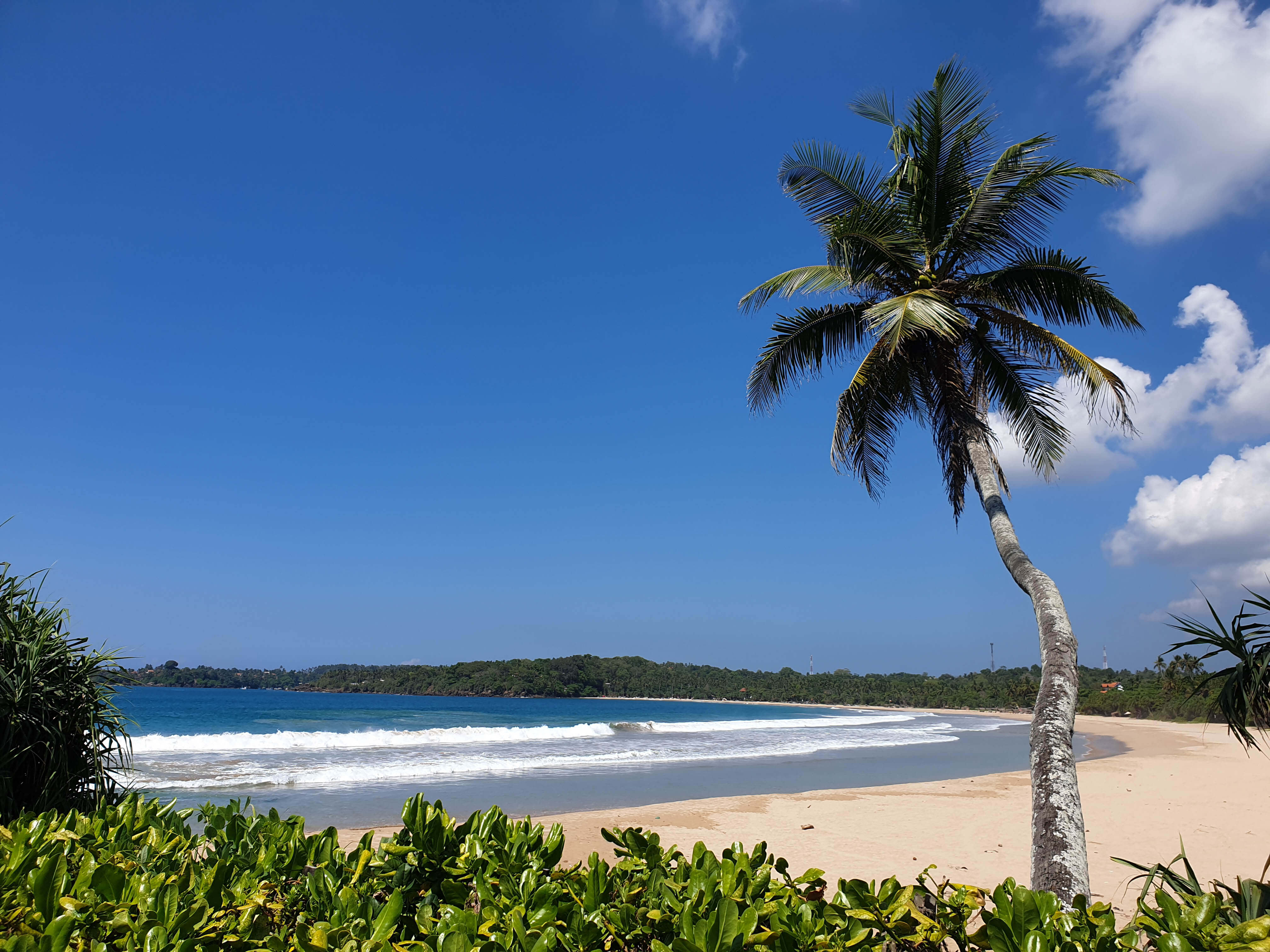 Tallala Beach