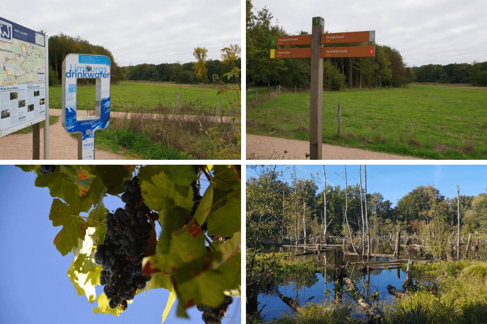 Uitjes en activiteiten in Midden-Limburg