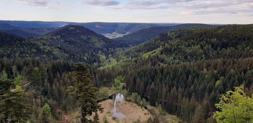 Uitzichtpunt Ellbachseeblick