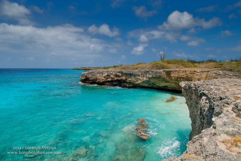 Zien en doen op Bonaire