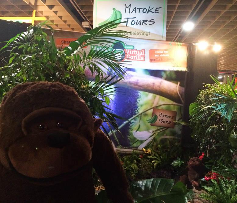 Het verhaal achter Virtual Gorilla