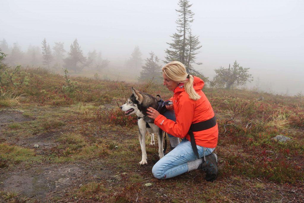 Reistips voor vakantie in Fins Lapland
