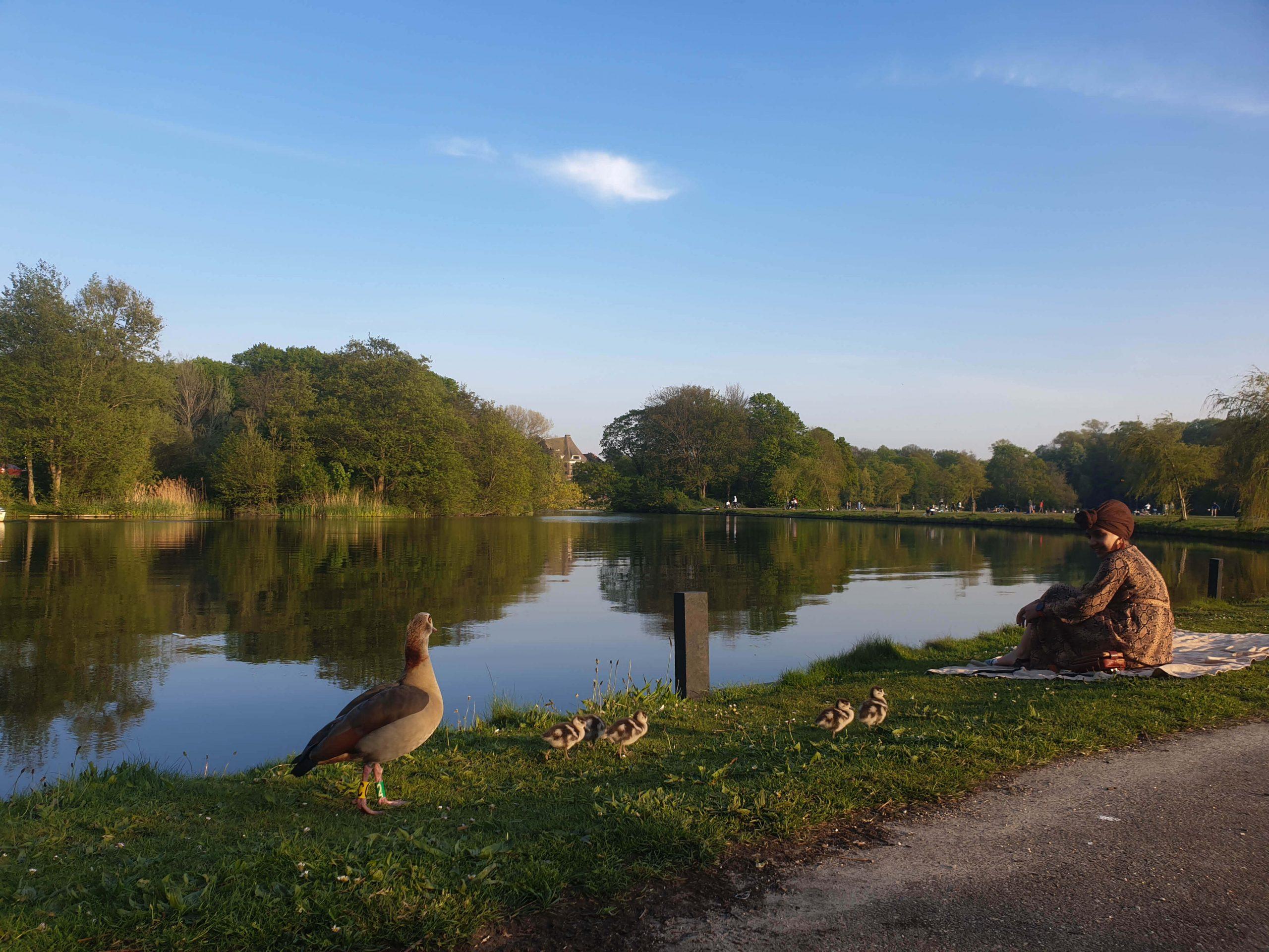 Westbroekpark in Scheveningen