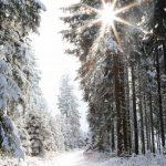 Citytrip & Wintersport in één, ontdek Thüringen