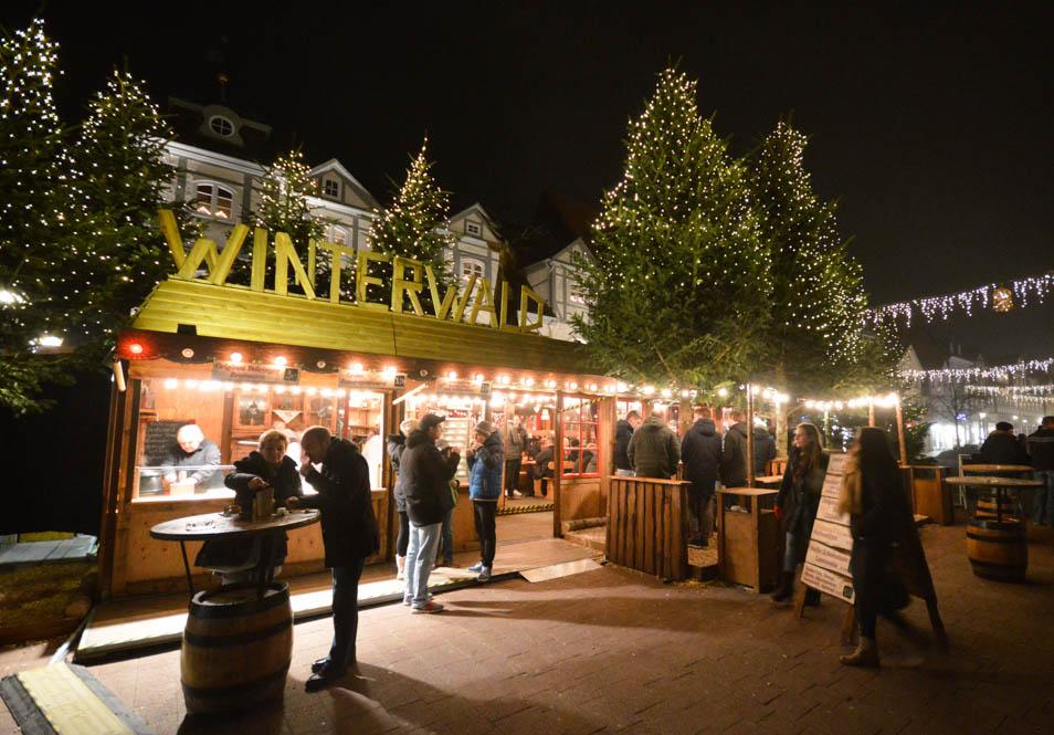Winterwald - Wolfenbuttel