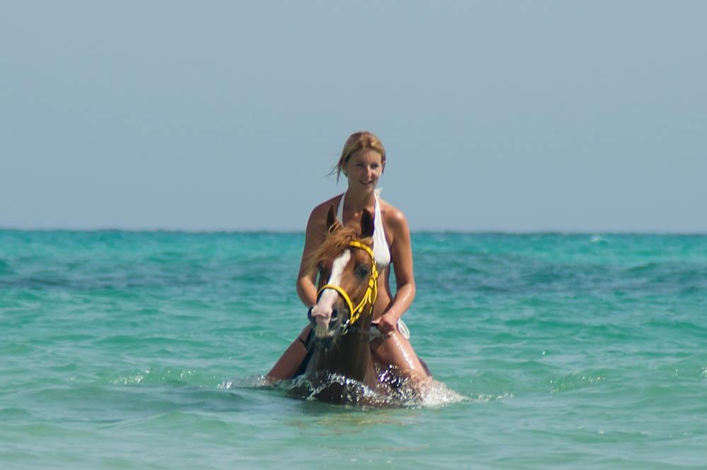 Zwemmen-paarden-Djerba