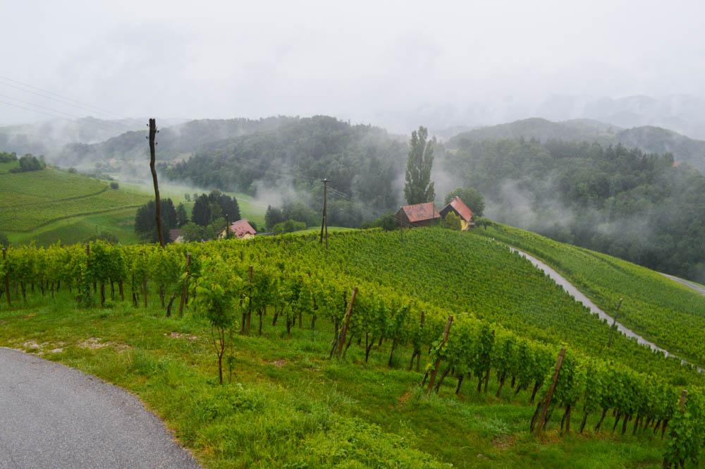 Auto huren in Slovenië kosten en prijs