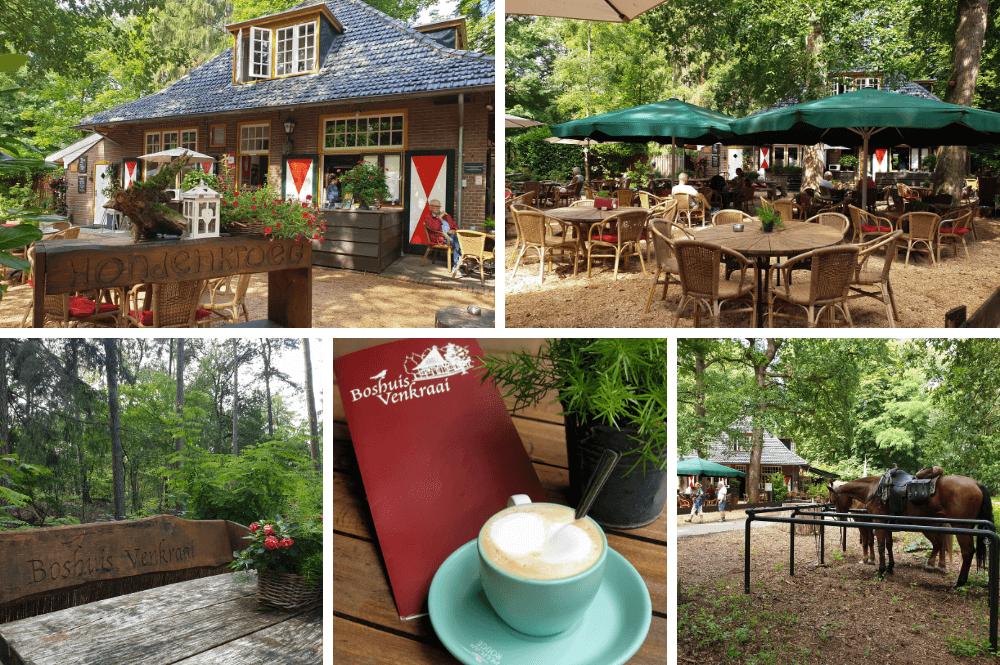 Koffie drinken of lunchen bij Boshuis Venkraai