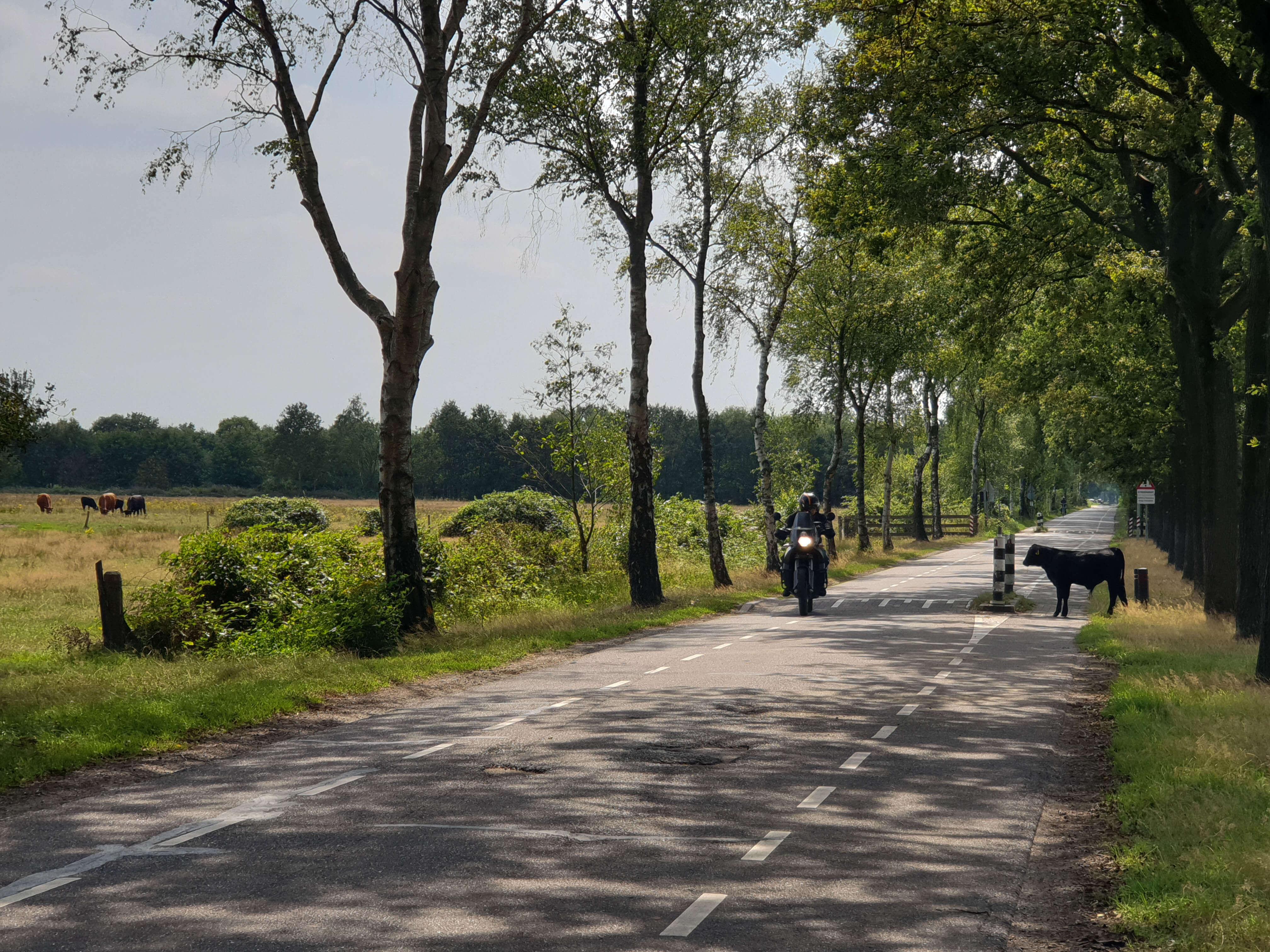 Omgeving Oisterwijk