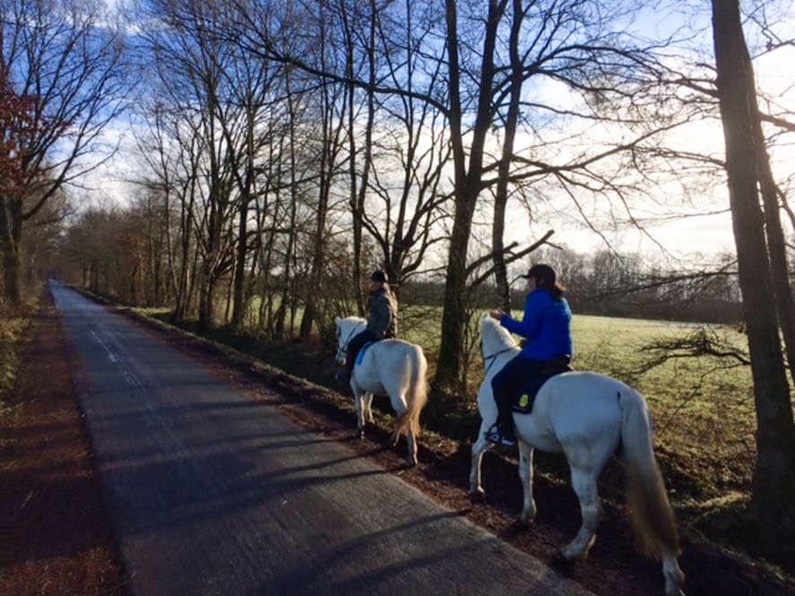 Paard huren in Duitsland