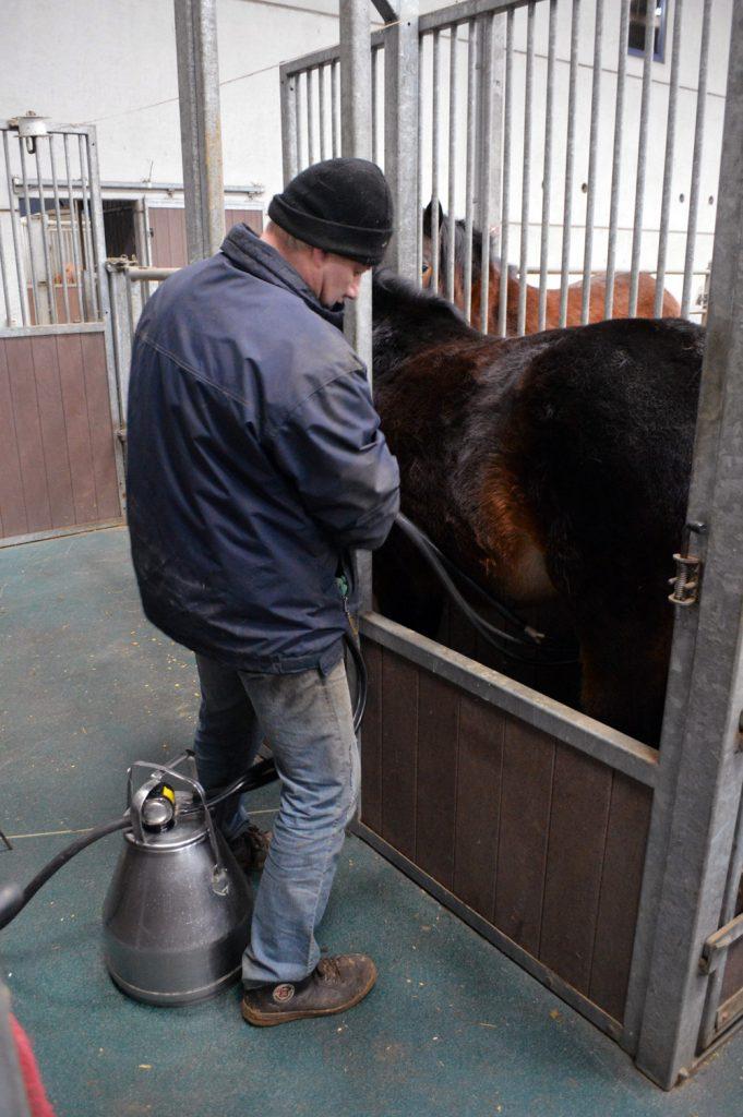 Paardenmelkerij Filippus