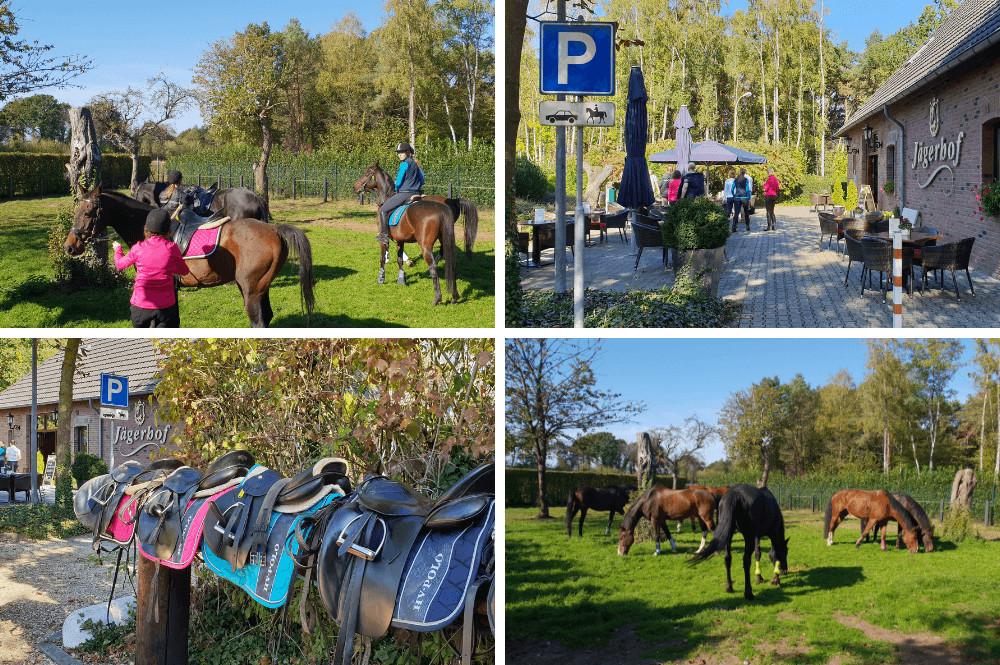 'Paarden Welkom' initiatief
