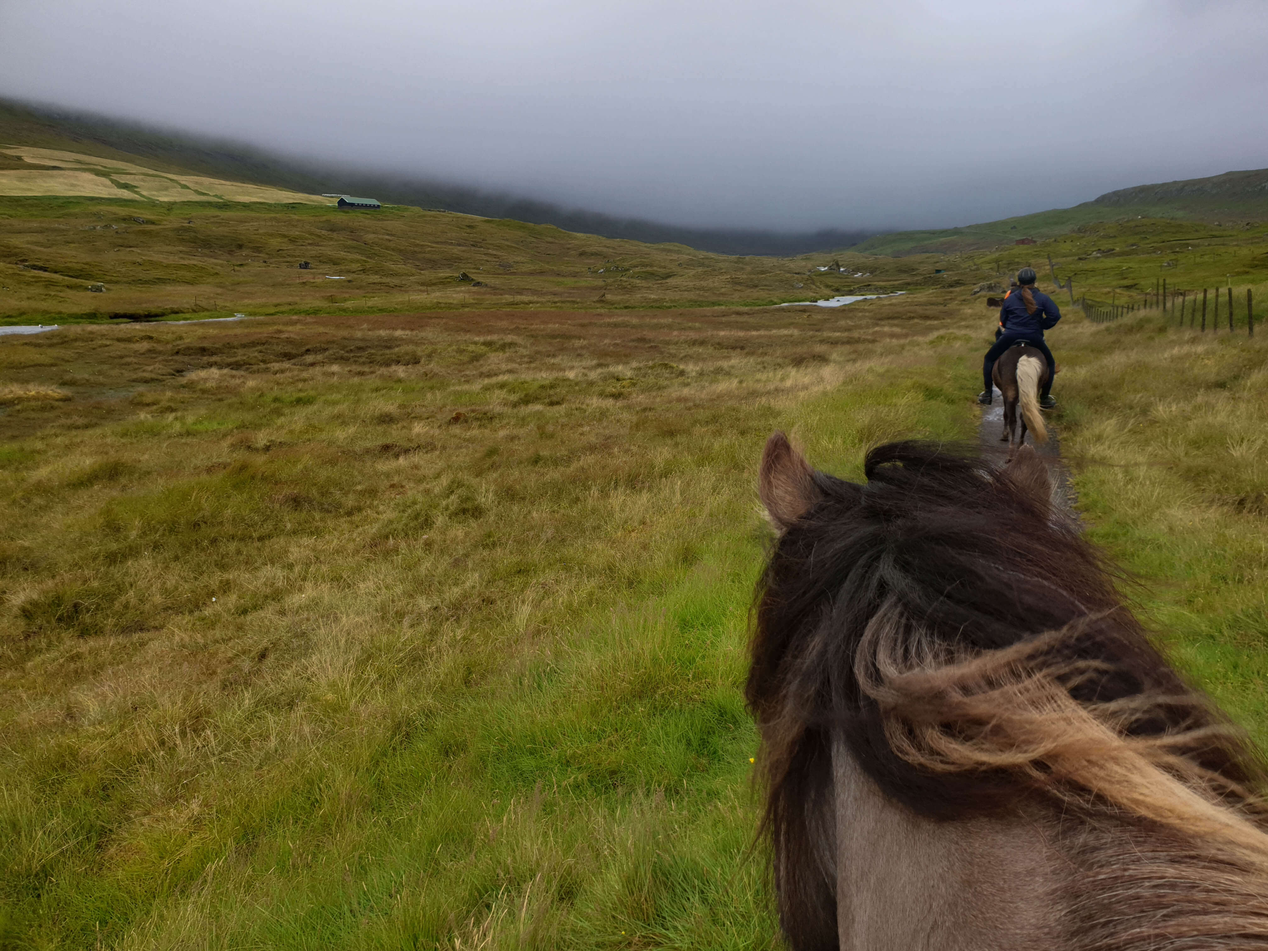 Paardrijdenop de Faeröer Eilanden