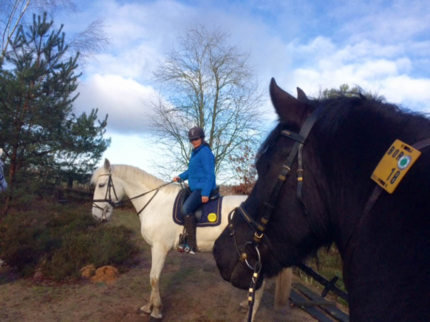 Paardrijvakantie in Gronau