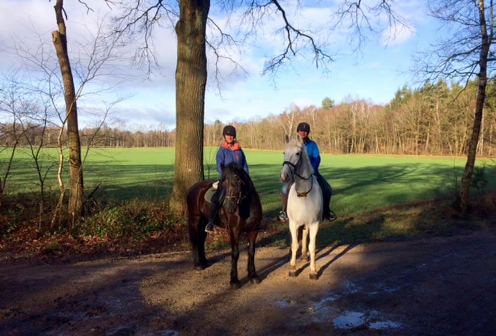 Paardrijvakantie Duitsland