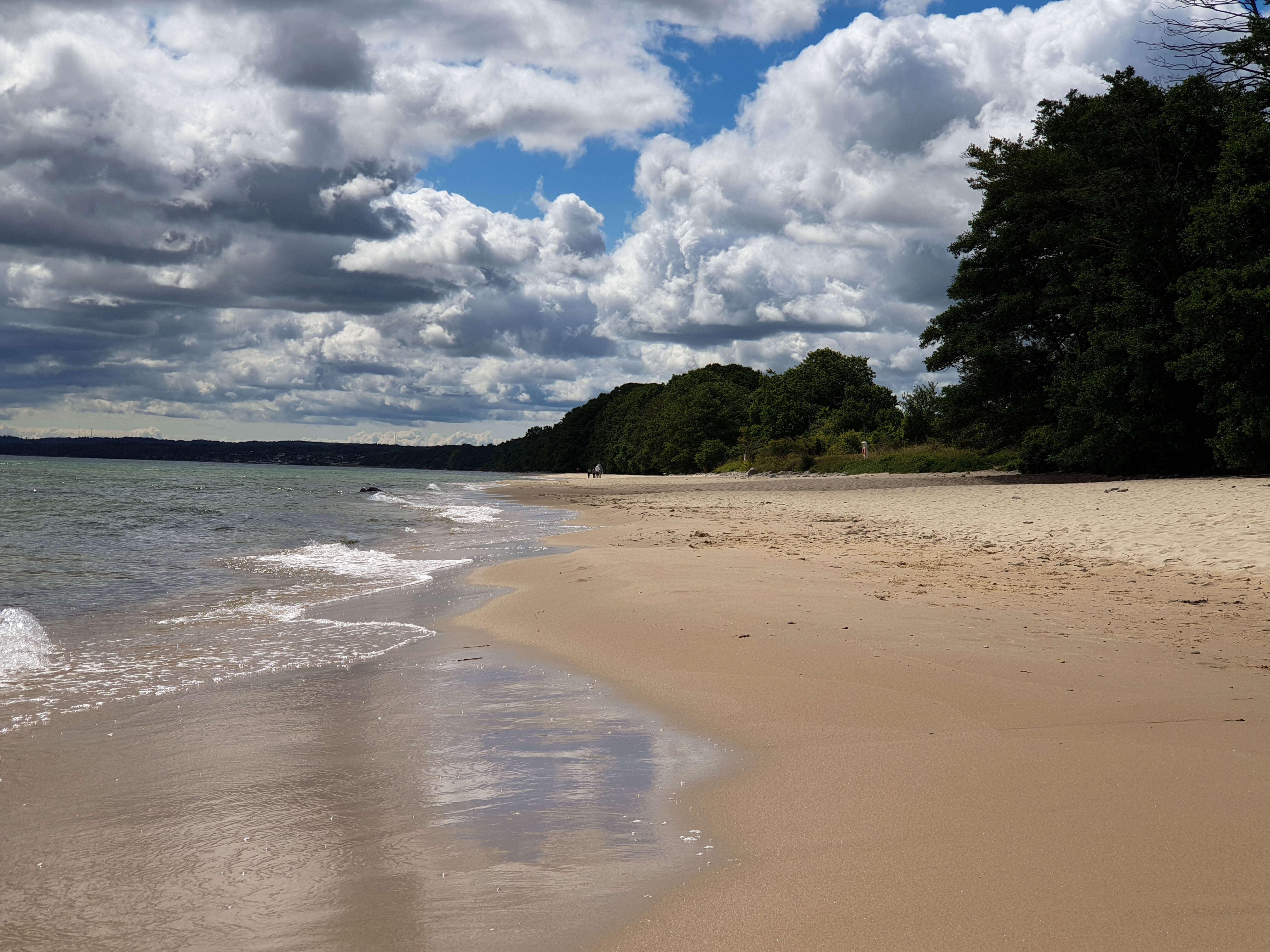 Stranden in Stenshuvud National Park
