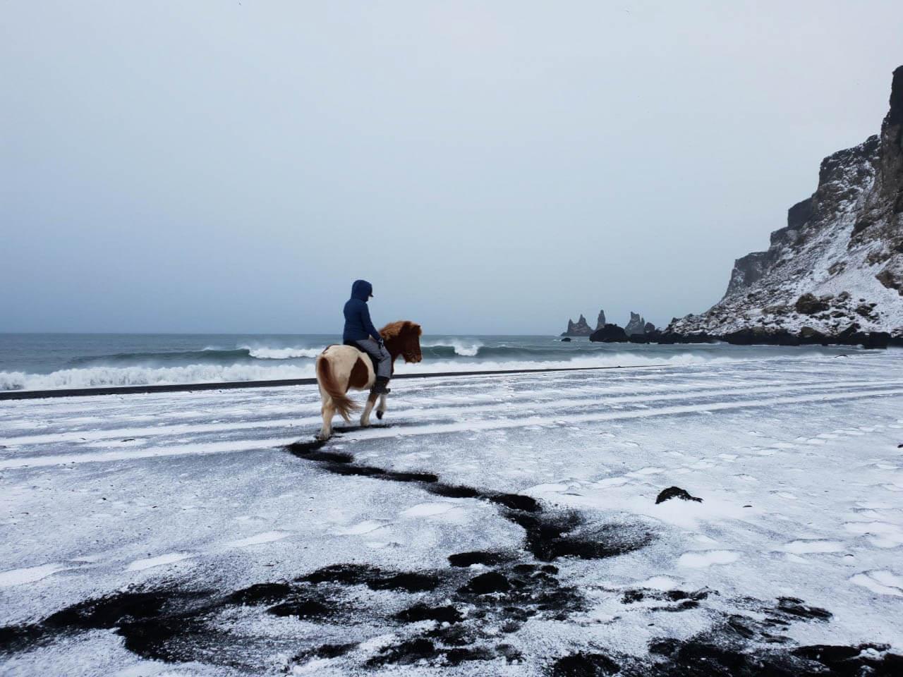 Tips voor paardrijden in IJsland