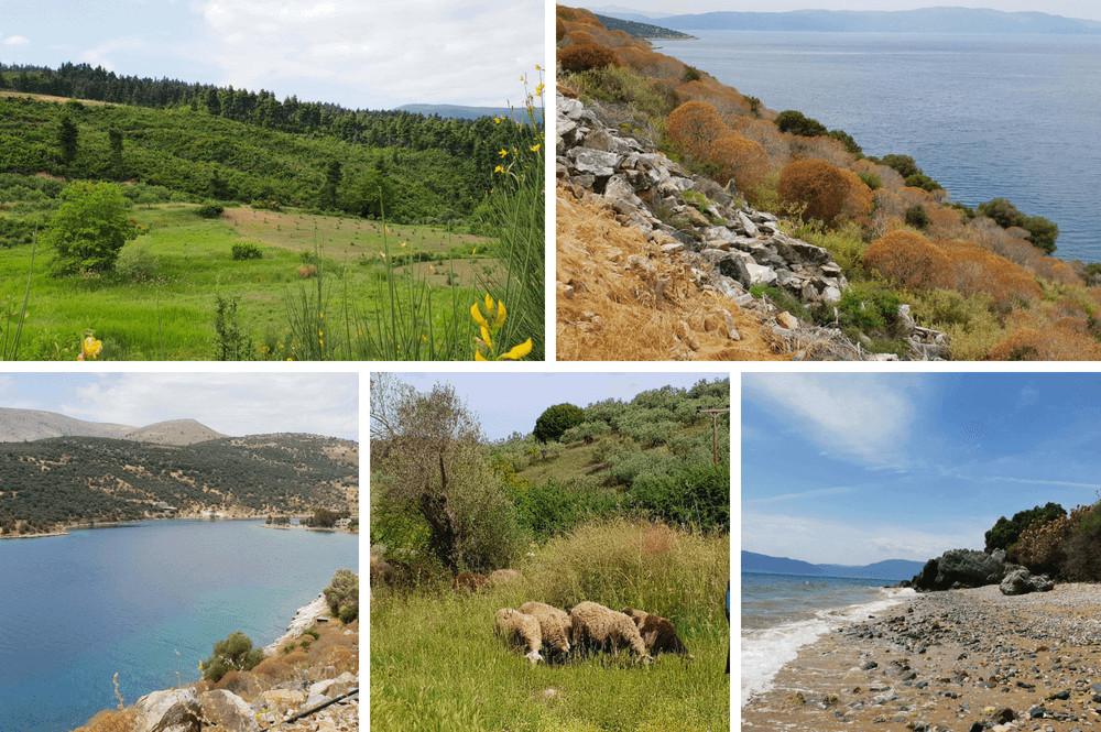 Bezienswaardigheden op eiland Evia in Griekenland