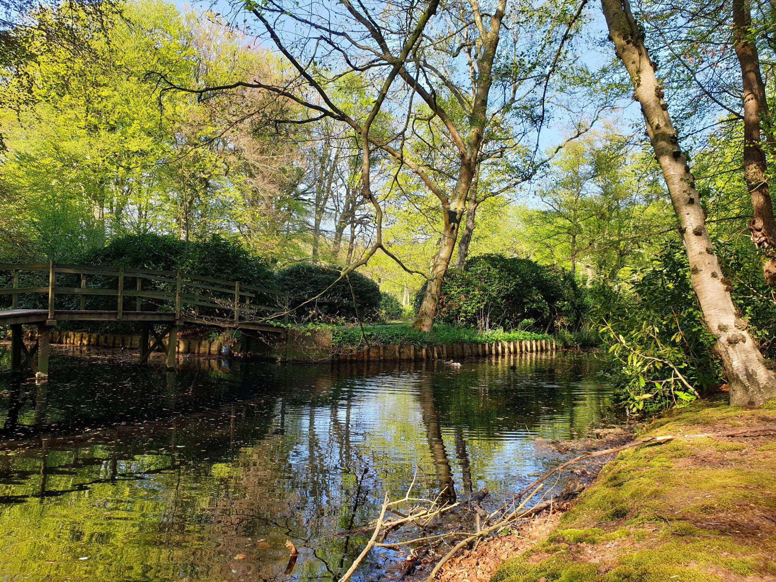 Wandelen Landgoed Ockenburgh