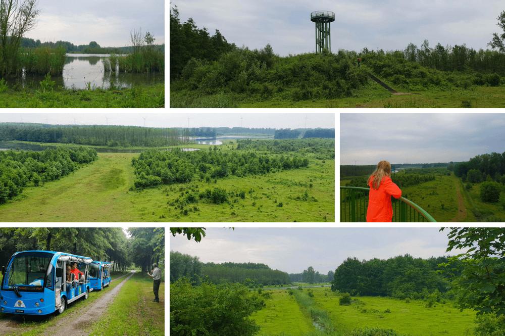 wandelen in Horsterwold