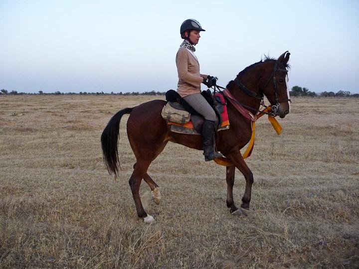 Interview Sietske over Paardrijden op reis