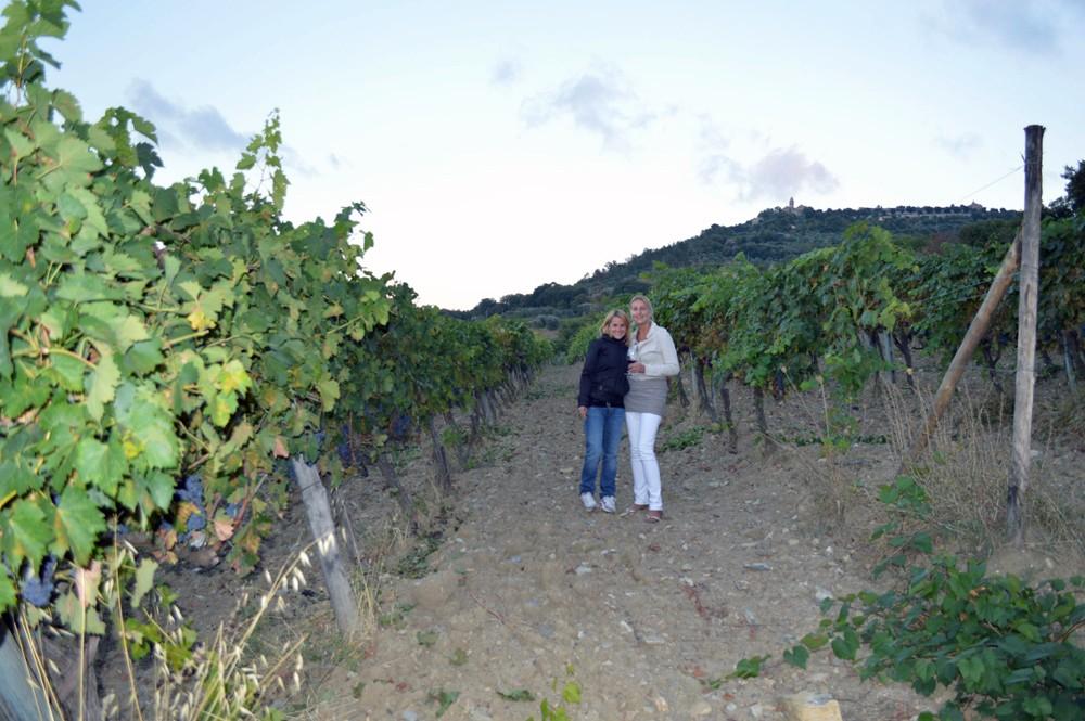 Wijngaard Cerbaia